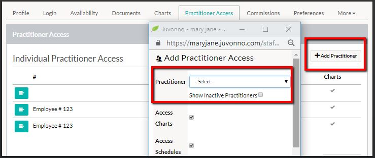 juvonno_practitioner_practitioner_access_tab_individual_access.JPG