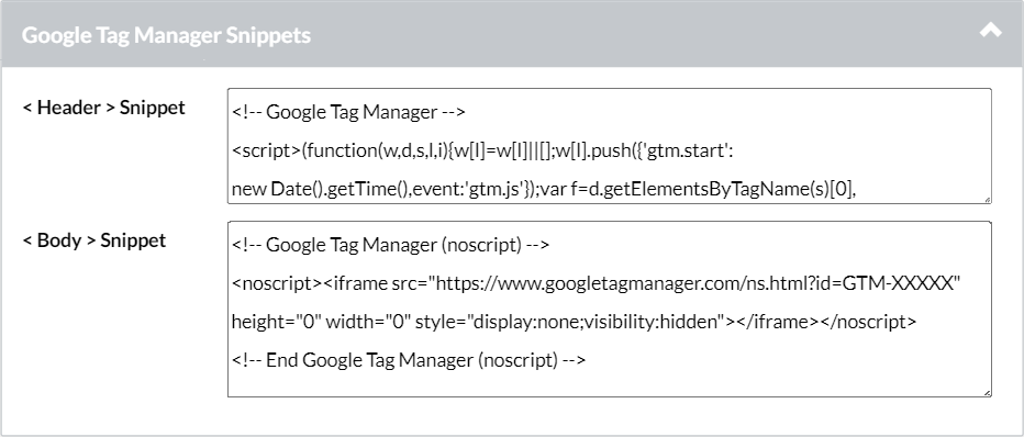 Google_Tag_Manager_Snippets.png
